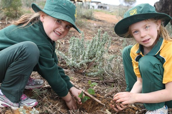 Yuna Primary School planting in the community park and playground © Chapman Valley