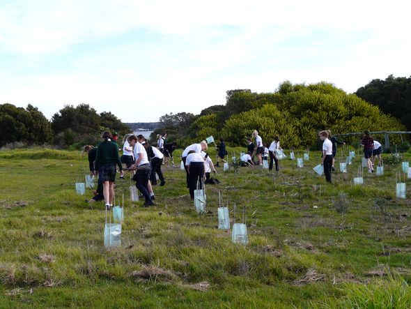 Great Southern Grammar students planting trees © Great Southern Grammar