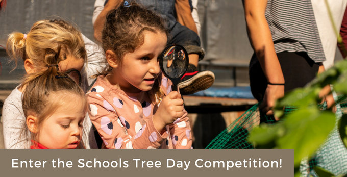 Schools Tree Day Competition