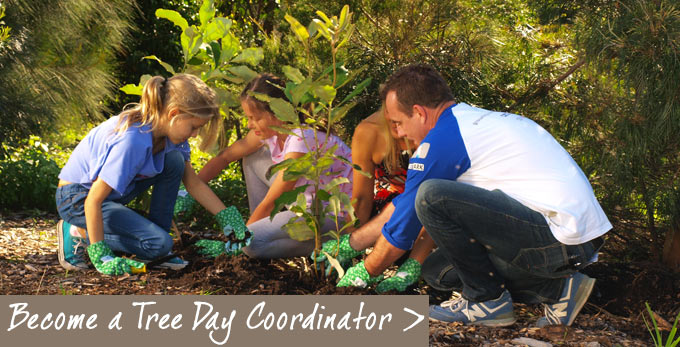 Become a Tree Day Coordinator