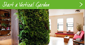 Get a vertical garden for your workplace