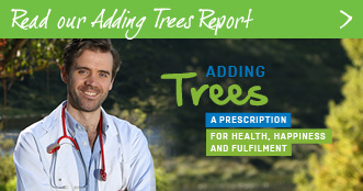 View the Tree Day Research