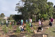 Sydney Park Planting 2011 © Lucy Band