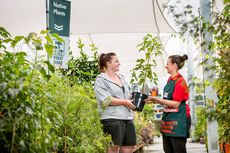 Bunnings Planting Workshops © Marty Middlebrook