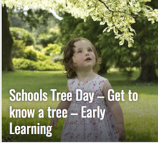Schools Tree Day lesson plans Secondary Unit