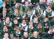 Primary School Children on Schools Tree Day © Planet Ark