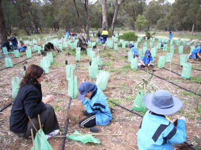 Tranby college students take part in 2007 schools tree day