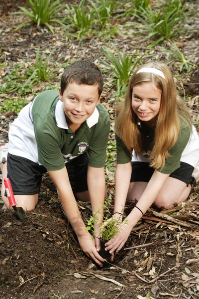 Planting for Schools Tree Day © Planet Ark