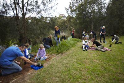 Community planting scene © Planet Ark