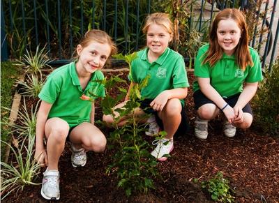 Primary School girls planting tree © Planet Ark