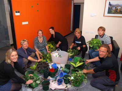 Planet Ark Team Planting Vertical Gardens © Planet Ark