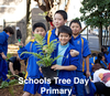 STD Cool Australia Lessons Plans - primary © Cool Australia & Planet Ark
